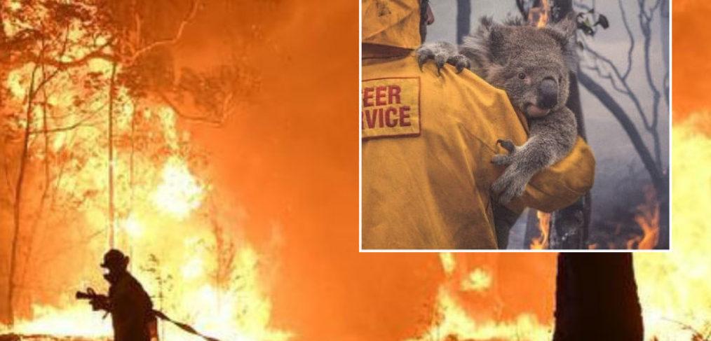 Mateship Is Alive During The Australian Bushfires